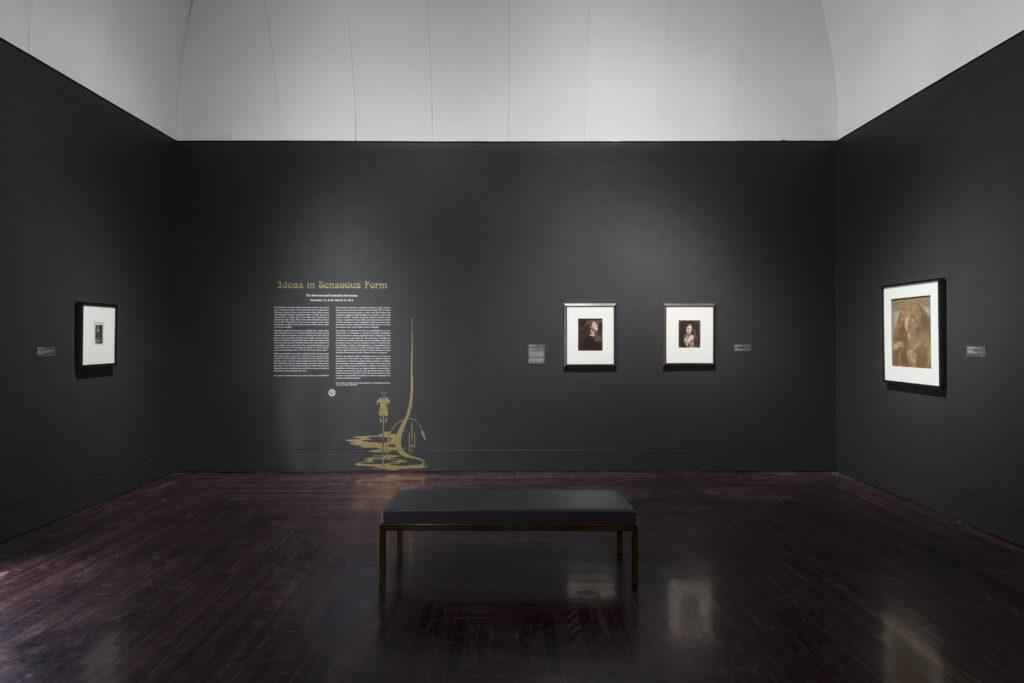 Exhibition View: Ideas in Sensuous Form