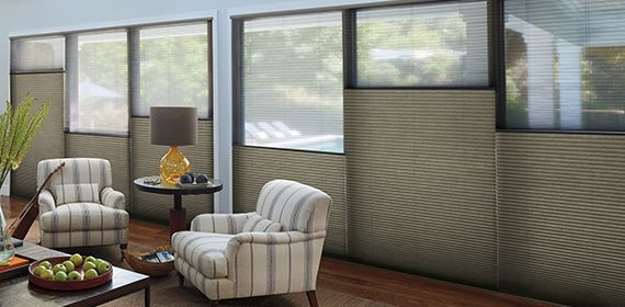Duette Honeycomb Shades by Hunter Douglas at The Blinds Man in Lexington Kentucky.