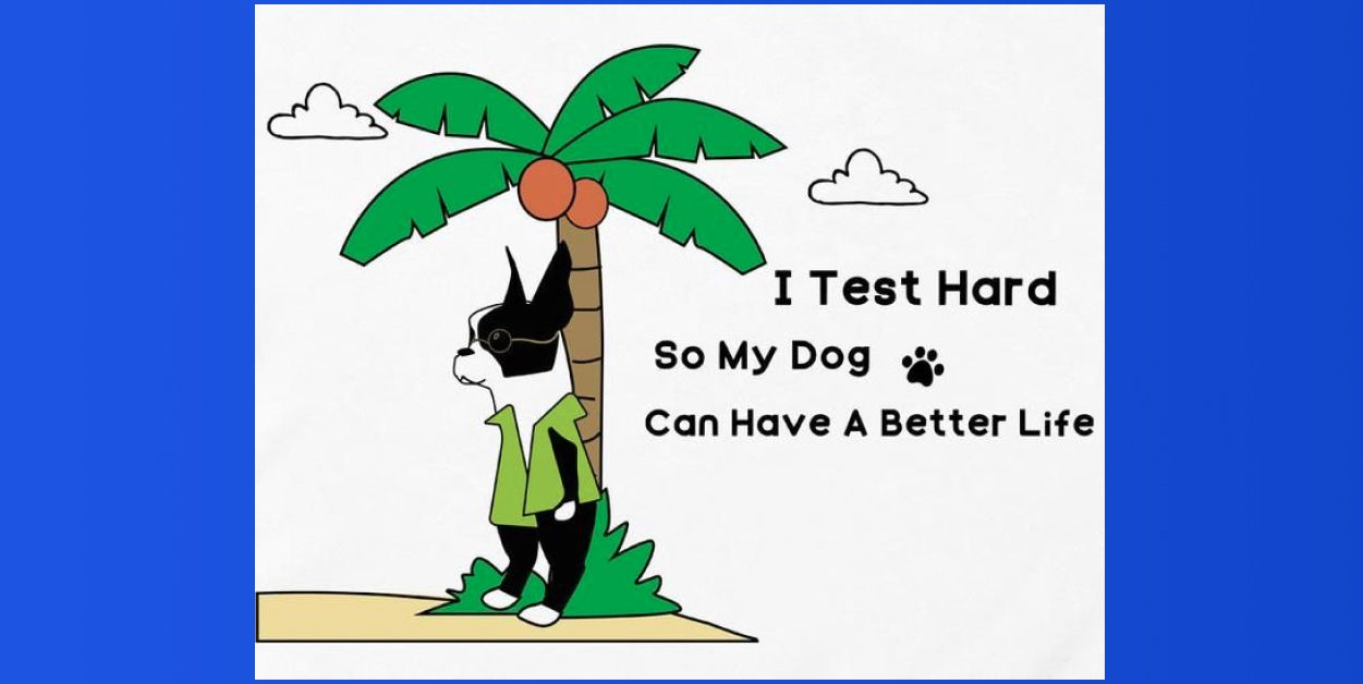 QA jokes: I test hard so my dog can have a better life