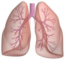 Embolia pulmonar: sintomas e tratamento