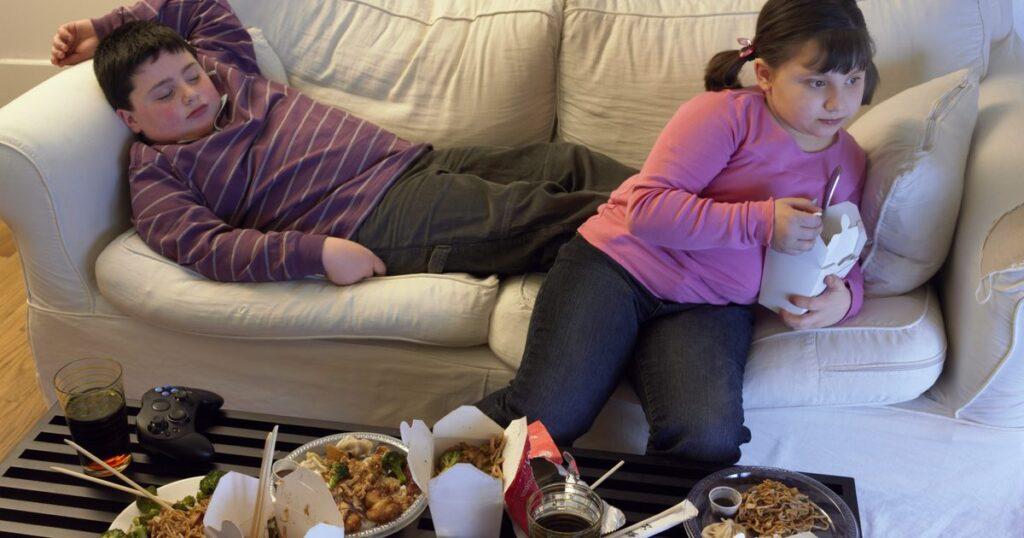 Tudo sobre obesidade e sedentarismo infantil