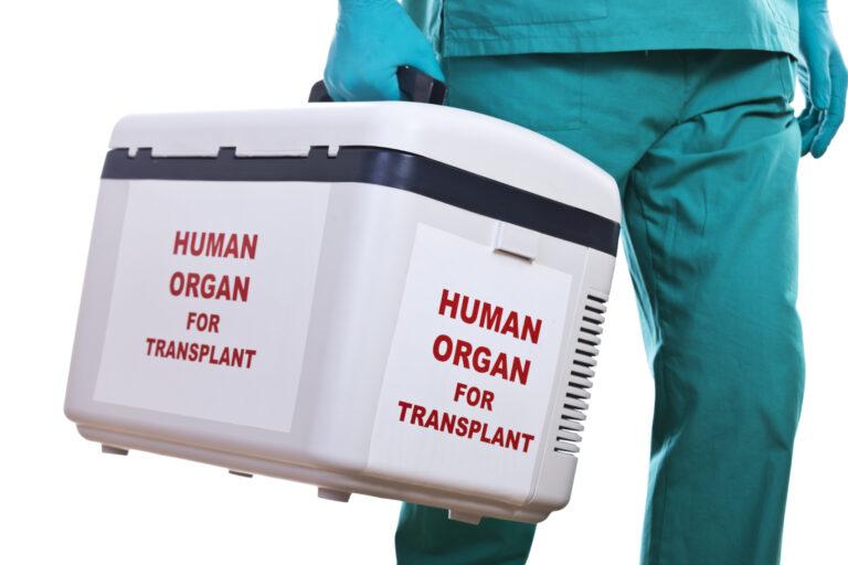 Como funciona transplantes para os planos de saúde