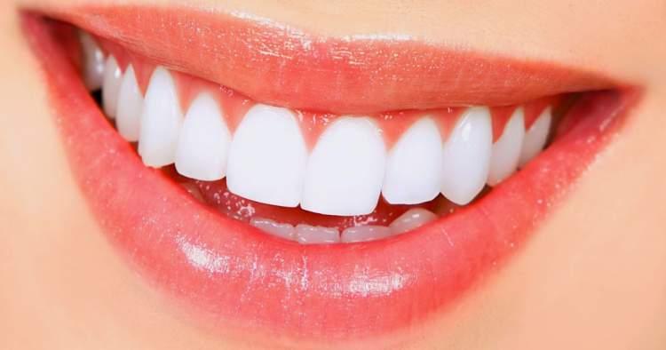 amil dental ou bradesco dental