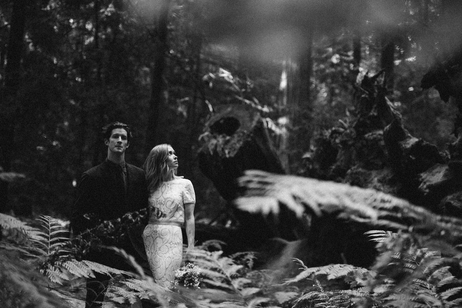 redwood-forest-elopement-0038