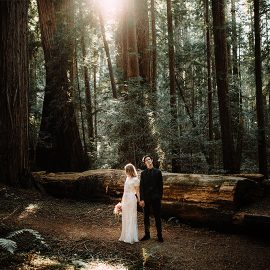 Redwood Forest Elopement