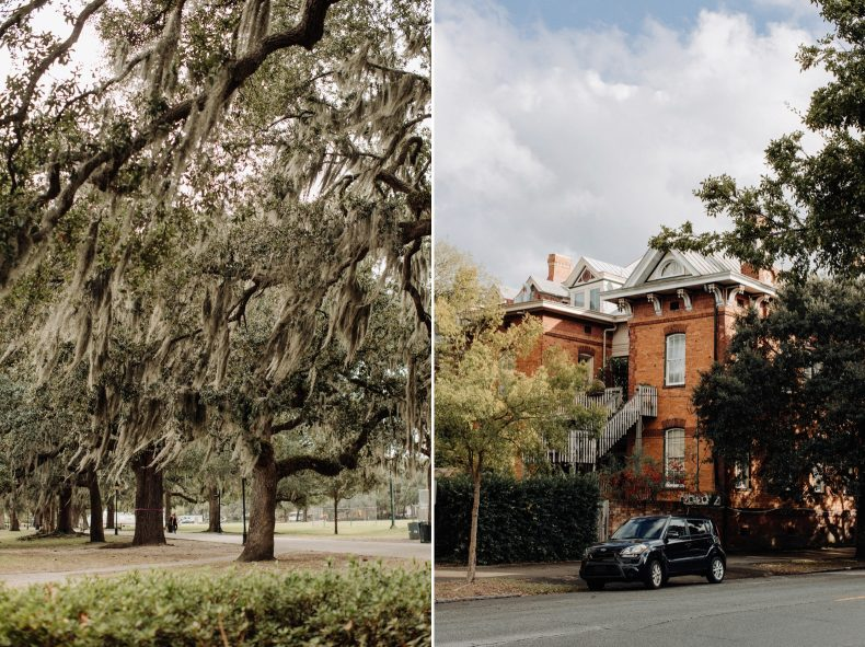 spanish moss trees on left and warm orange brick home on right