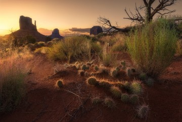 things to do in monument valley fee and opening hours