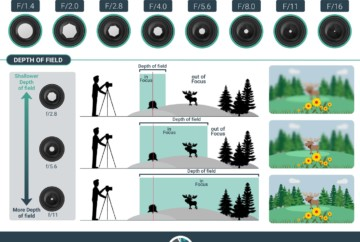 what is aperture in photography and how to affect depth of field