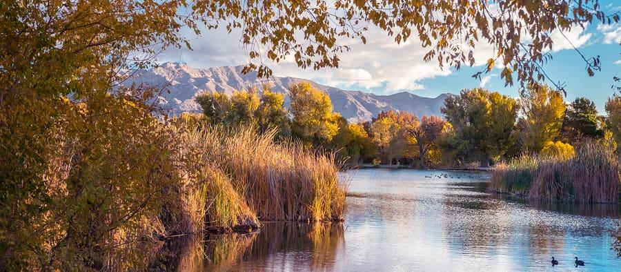 Floyd Lamb Park en Tule Springs, la zona más tranquila de Las Vegas