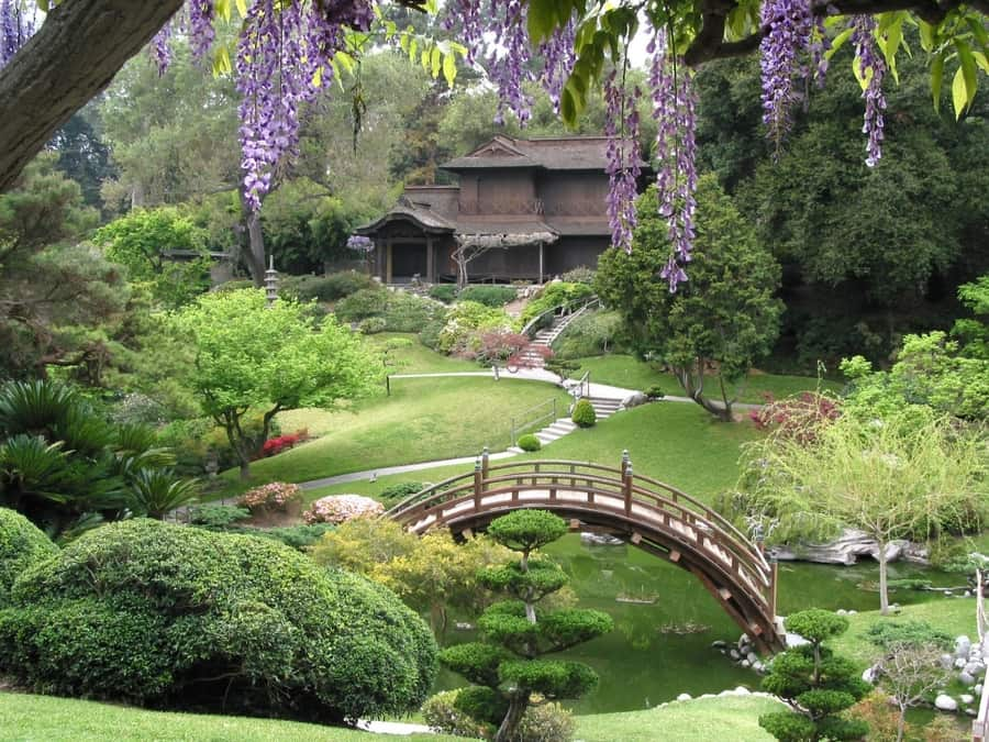 Huntington Library, a beautiful place to visit in Los Angeles