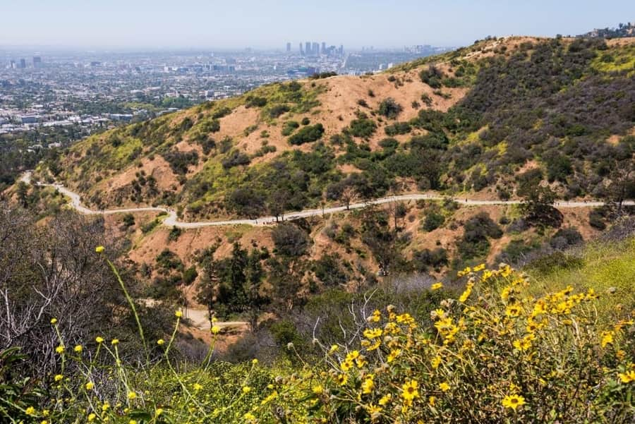 Runyon Canyon Park, the best place for hiking in Los Angeles