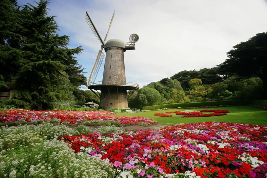 Golden Gate Park, a place to go in San Francisco