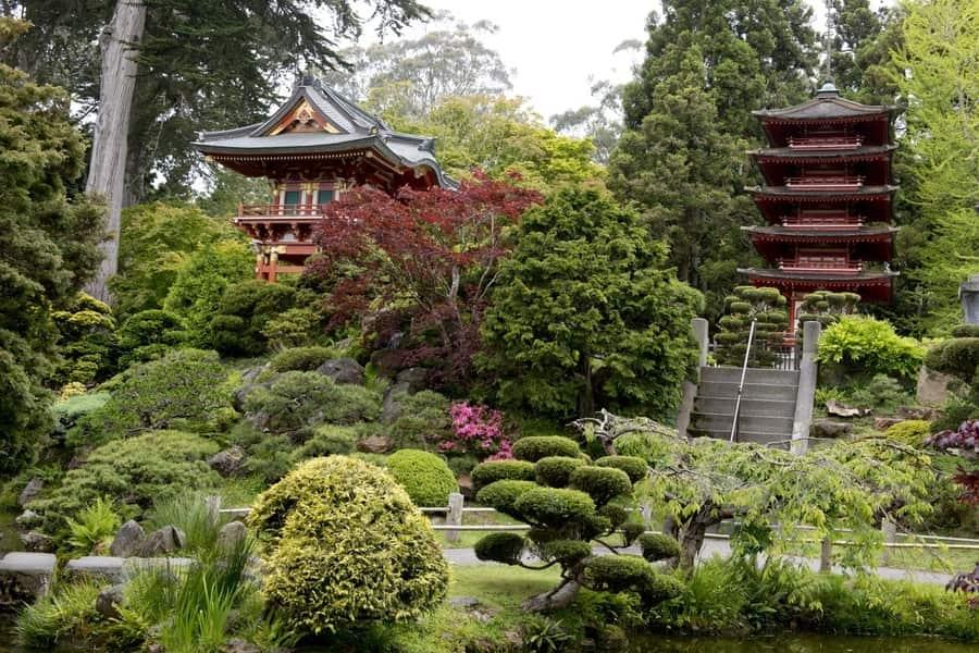 Hagiwara Tea Garden, one of the best gardens to visit in San Francisco