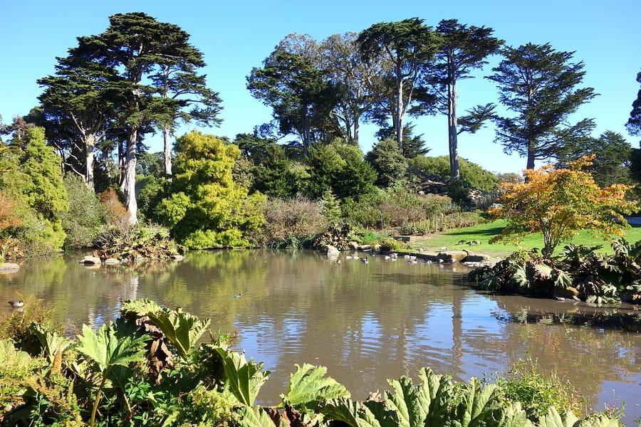 San Francisco Botanical Garden, a place to go in SF