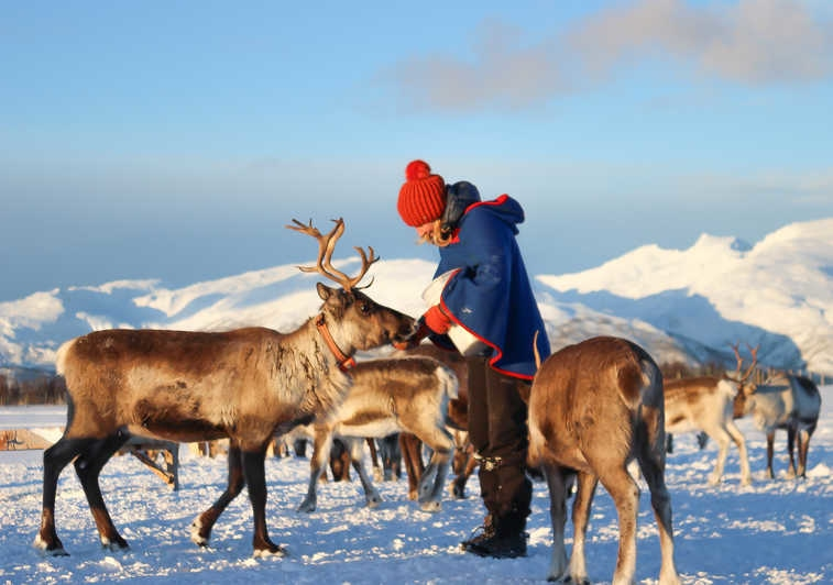 Tour to discover sami culture in Tromso, Norway