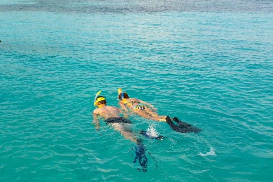 Snorkel, algo que hacer en Isla de Lobos