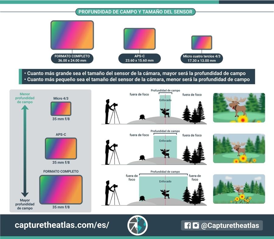 profundidad de campo y tamaño del sensor relacion infografia