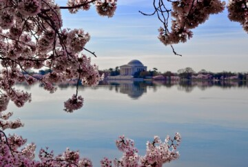 Qué ver en Washington D.C. Estados Unidos