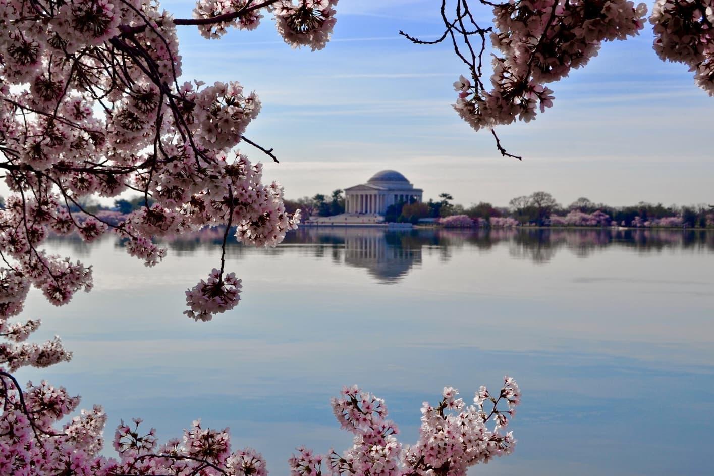 Monumento a Thomas Jefferson, que ver en Washington D.C.