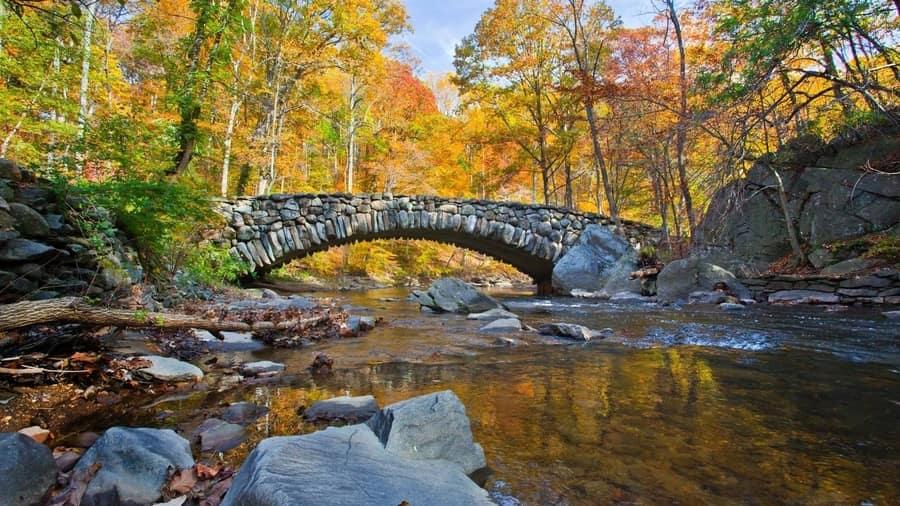 Rock Creek, que visitar cerca de Washington D.C.