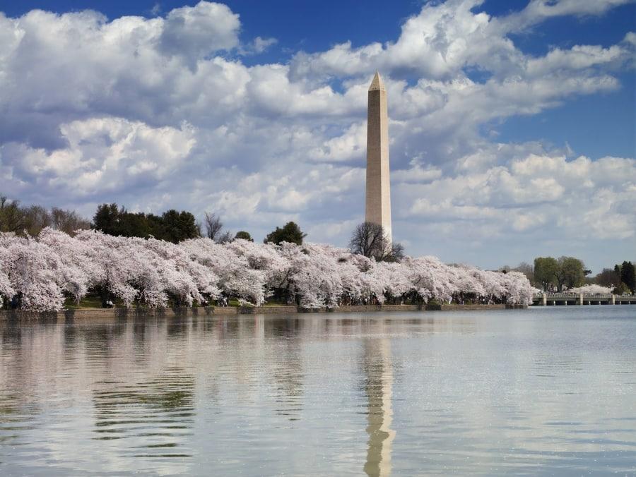 Monumento a Washington, uno de los lugares de interés en Washington D.C.