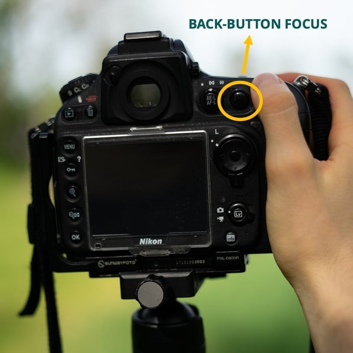 How to focus using Back-button focus