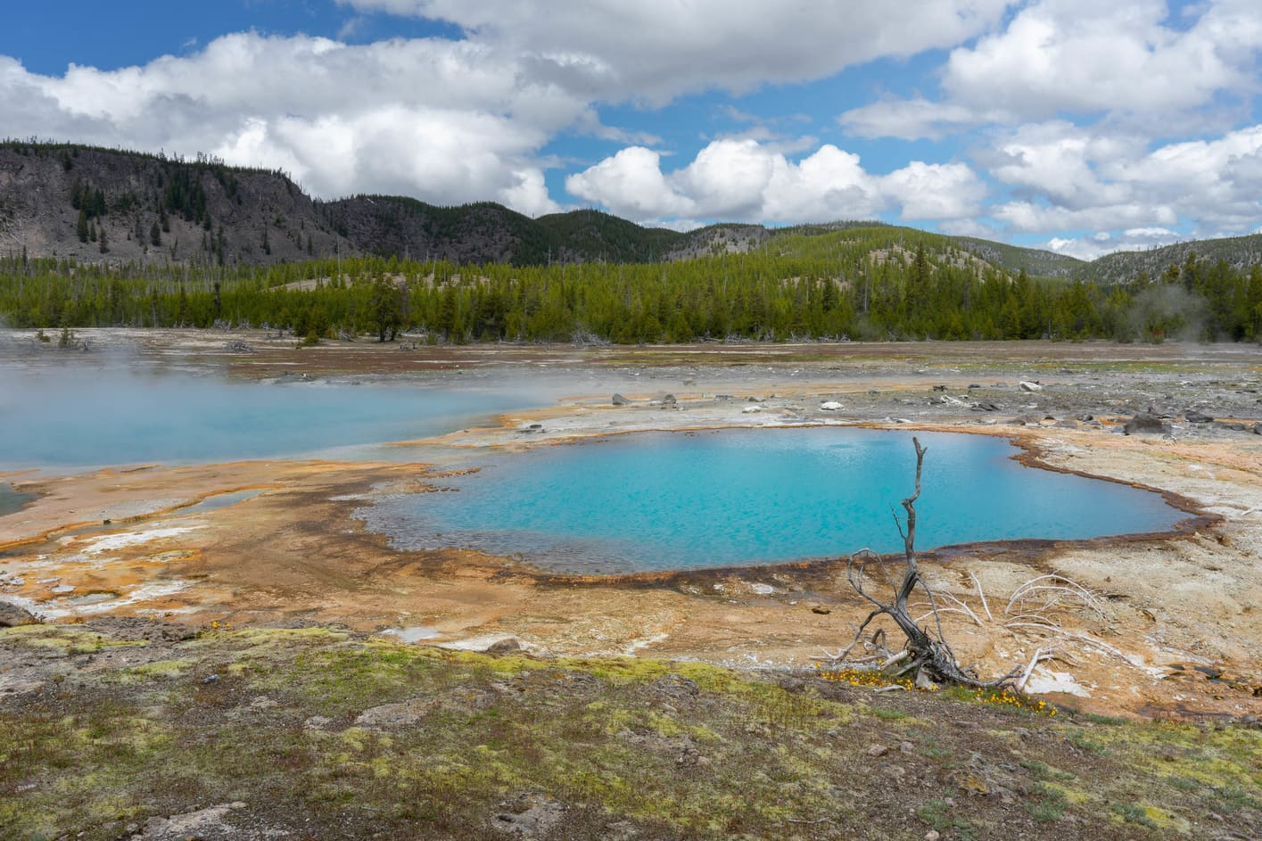 Biscuit Basin, what to do in Yellowstone to know the geothermal activity