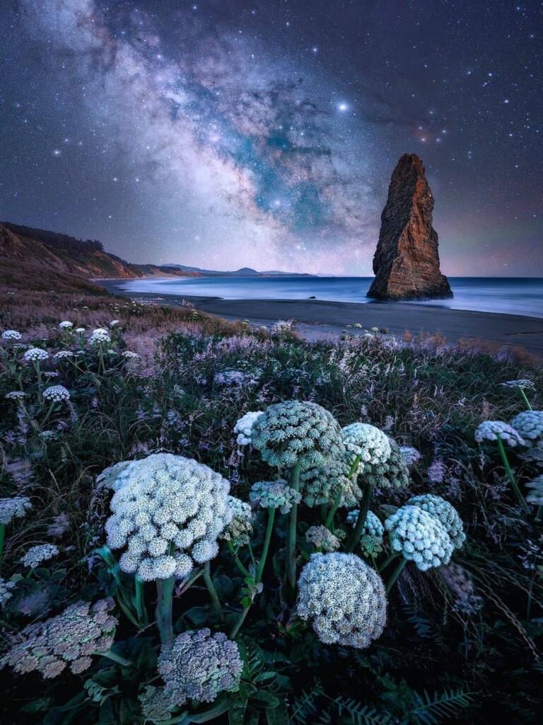 """Oregon Nights"" – Chance Allred"