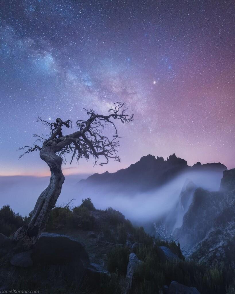 """Madeira Stars"" – Daniel Kordan"