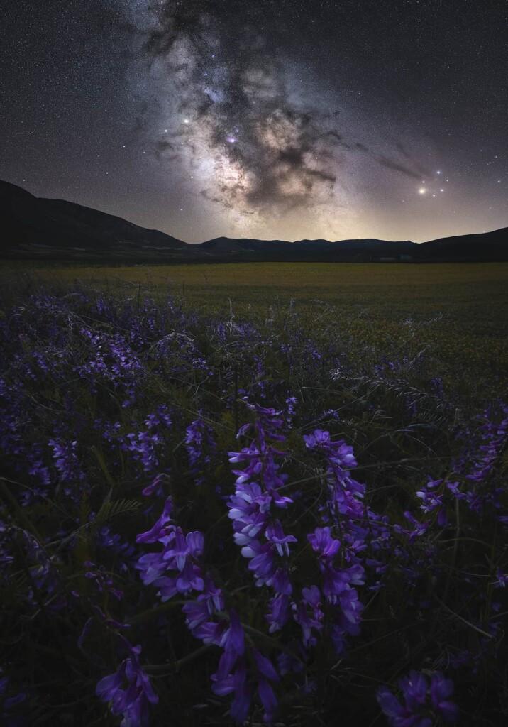 """Early Summer Night's dream"" – Roksolyana Hilevych"