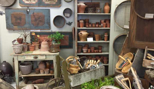 City Garden Ideas: Spotlight
