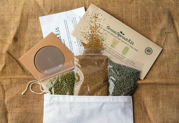 Sustainable Santa Cruz Green Sprout Kit