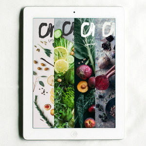 Chickpea Magazine Digital Bundle (19 Issues)