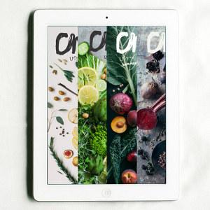 Chickpea Magazine Digital Bundle (19 Issues)