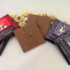 Raw Chocolate Bar Variety 6-Pack