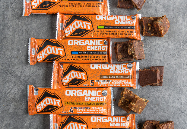 Organic Energy Bars 12-Pack
