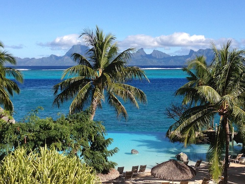 Tahitian palm with the island of Moorea in the background. Courtesy of Lori Branham.