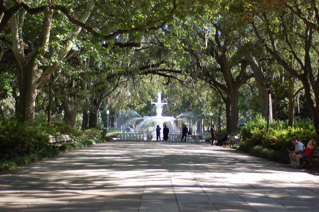The overhanging trees of Forsyth Park, one of the most beautiful city parks in the country