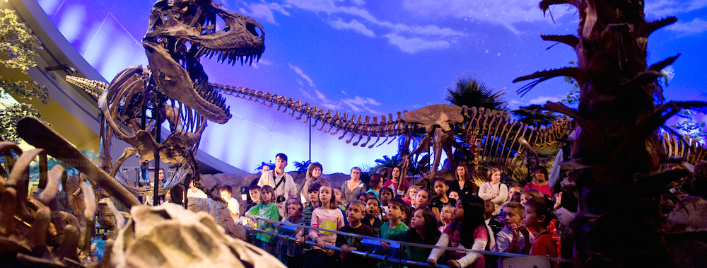 Kids will have a dino-mite time at the Children's Museum Indianapolis. Credit: childrensmuseum.org.