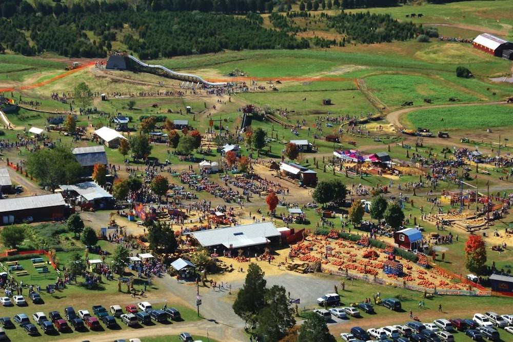 Cox Farm Fall Festival. Photo by Eric Taylor.