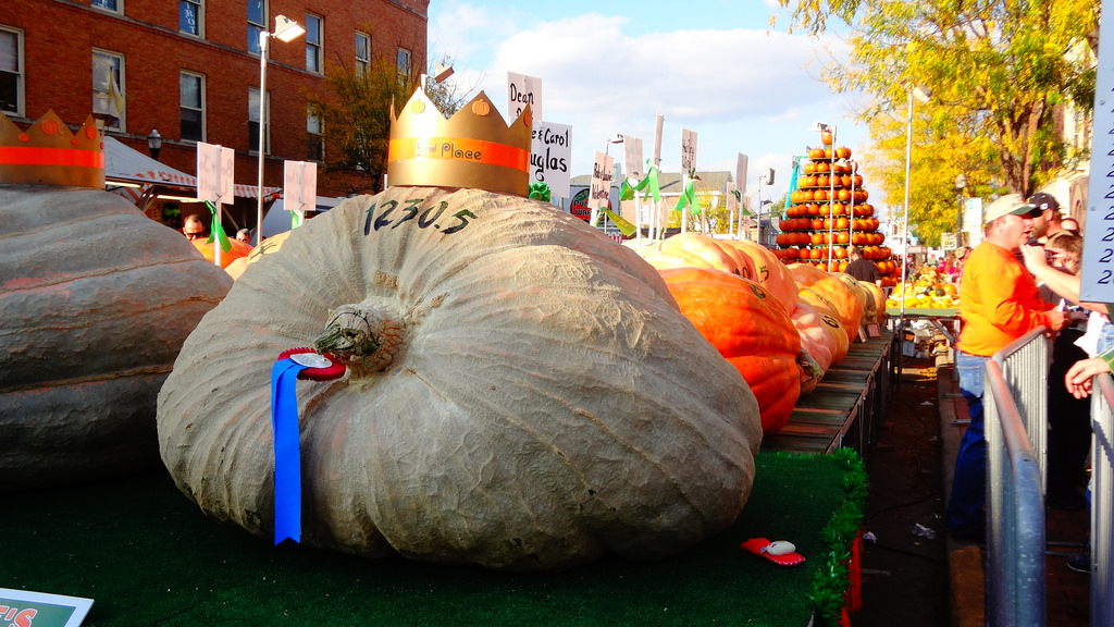 The annual Circleville Pumpkin Show is always huuuuge, like this unbelievable pumpkin. Which cinches it as one of the best fall festivals of the year. Credit Vasenka Photography/Flickr.