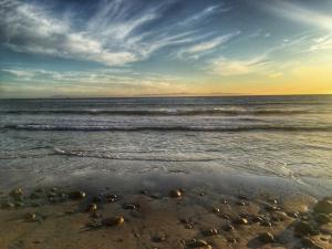 Butterfly Beach, Santa Barbara, beaches, sunset