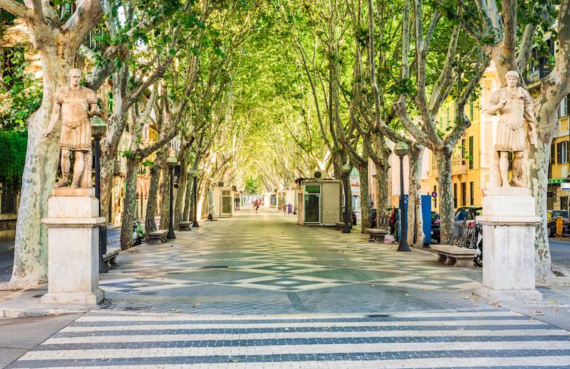 Spain Majorca, beautiful city street avenue La Rambla in Palma de Mallorca