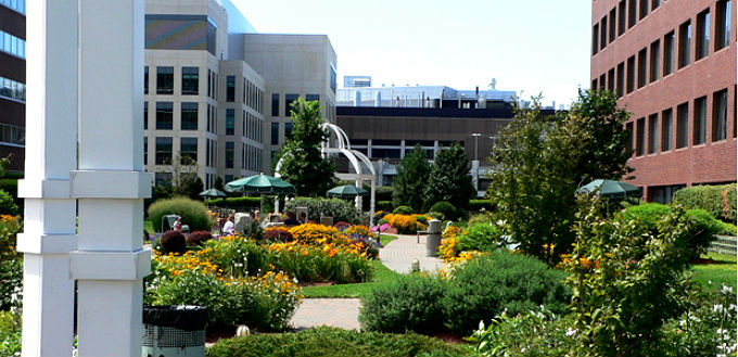 rooftop garden in Kendall Square -Credit-Kendall Square Association-My Secret Boston