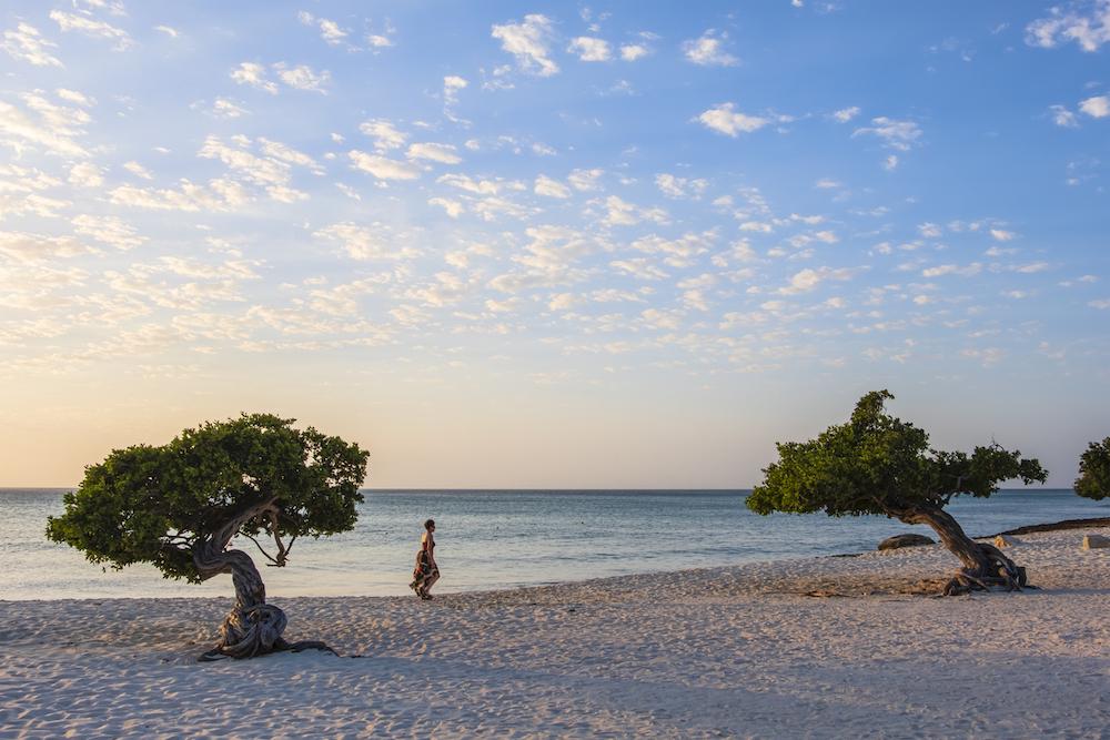 Aruba, Eagle Beach,CR,GR