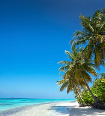 Jobs in the Cayman Islands | CML Recruitment