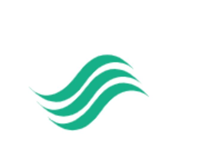 Nf logo 4