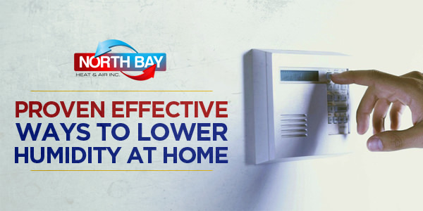 Proven Effective Ways to Lower Humidity At Home