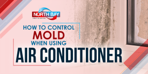 How To Control Mold When Using Air Conditioner