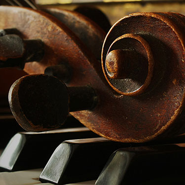 Detail of old musical instruments